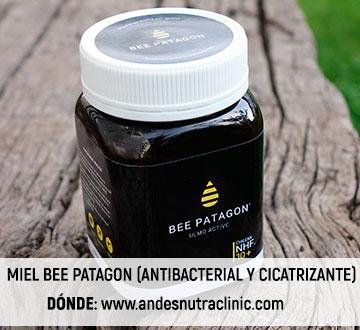 miel_bee_patagon