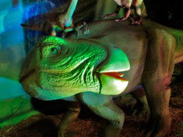 Exposición de dinosaurios en Independencia