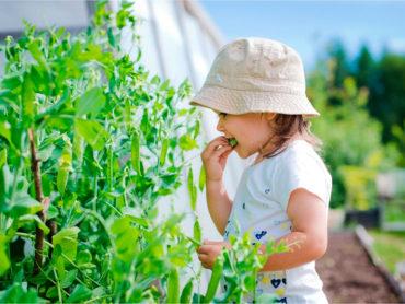 Niña con riesgo de intoxicación con plantas
