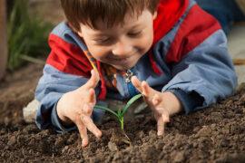 Es bueno que los niños aprendan a jardinear