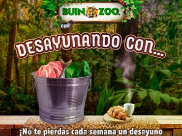 En Buin Zoo te enseñan sobre animales