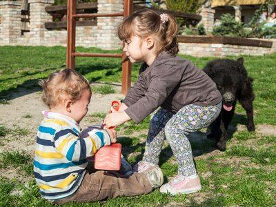 Las peleas son típicas en niños pequeños